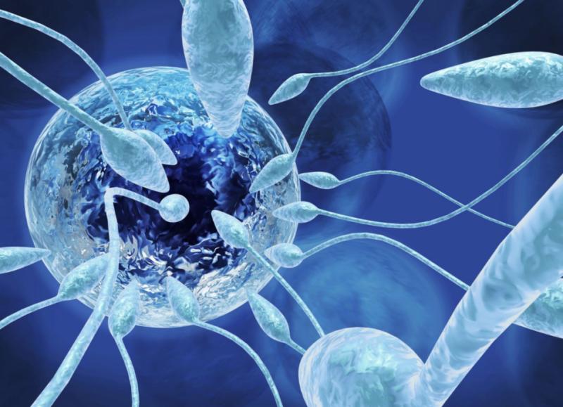 Asthenoteratozoospermija: kāda ir šī diagnoze, vai ir iespējams dabiski grūtniecību, patoloģijas cēloņi, ārstēšana