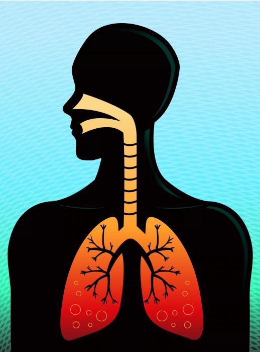 Tập thể dục phòng ngừa làm giảm sự phát triển của bệnh phổi.