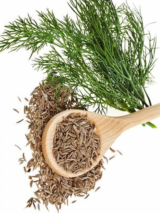 A köményt hatékonyan használják a hagyományos orvoslásban.