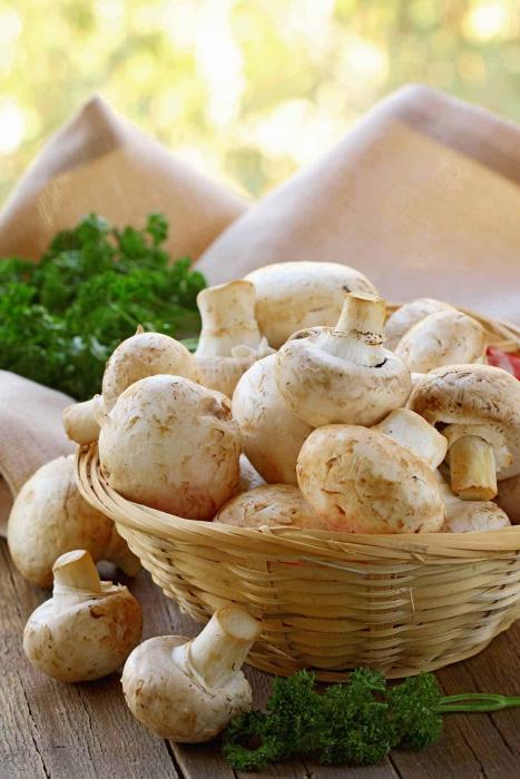 Kako odrediti svježinu gljiva pri kupnji