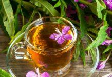 Ivana tēja grūtniecības laikā
